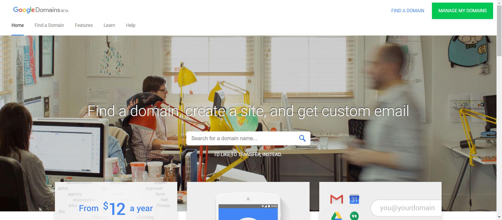 Google Domains website image